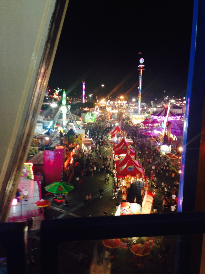 Another pic I took at the OC fair last month